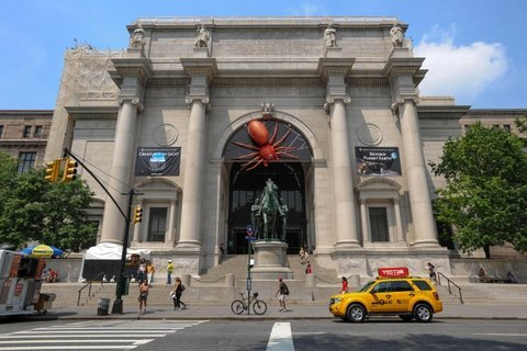 Spider's Alive - American Museum of Natural History entrance