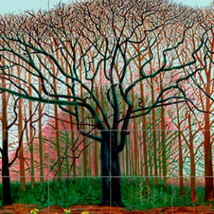 hockney bigger trees near warter-hockney-hockney central