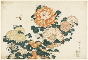 Chrysanthemums and Horsefly, from an untitled series known as 