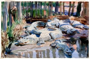 AWC IMAGE 21 edit Sargent - Muddy Alligators